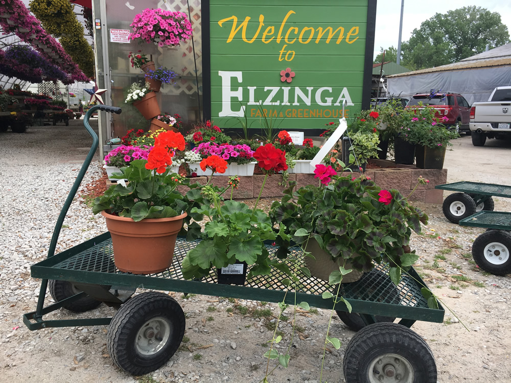 Welcome to Elzinga's!